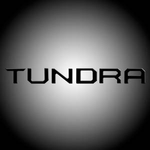 RECON Black Raised Letter Tailgate Inserts | 2014-2017 Toyota Tundra | Dale's Super Store