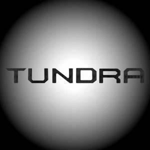 RECON Carbon Fiber Raised Letter Tailgate Inserts | 2014-2017 Toyota Tundra | Dale's Super Store