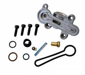 "Ford ""Blue Spring"" Upgrade Kit 