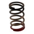 Shop By Category - Turbo Systems - Turbosmart - Turbosmart GenV HP Spring 40psi (Black/Red) | Universal Fitment
